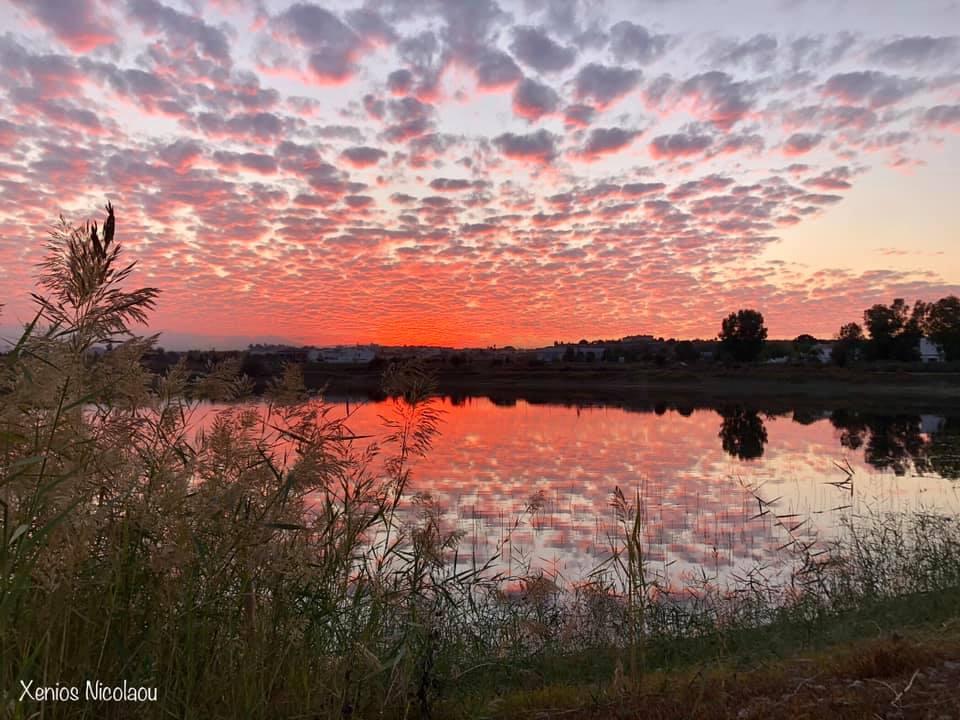 Τα χρώματα του ουρανού εχθές ήταν πίνακας - Απίστευτα πλάνα από την λίμνη Μαγγλή στη Λευκωσία