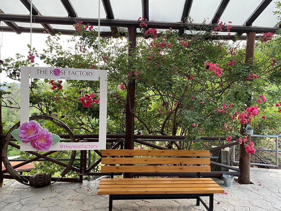 Επισκεφτήκαμε το Rose Factory στον Αγρό και μοσχομυρίσαμε το καλύτερο ροδόσταγμα της Κύπρου!